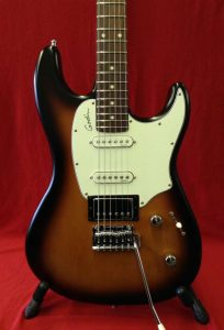 New Godin Session Vintage Burst