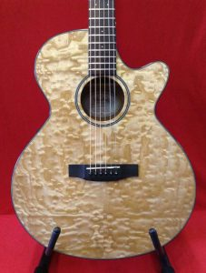 Used Mitchell Guitar