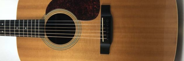 2006 Martin Custom Dreadnaught Rosewood
